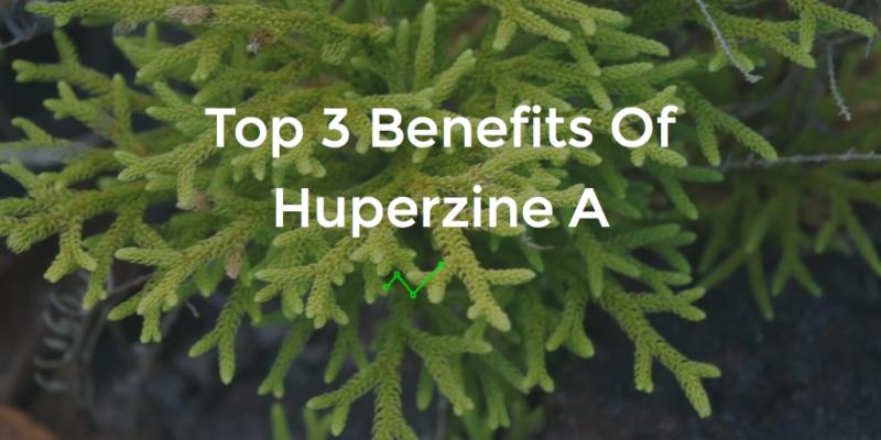 huperzine a benefits