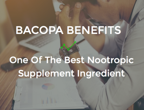 Bacopa Benefits: One Of The Best Nootropic Supplement Ingredient