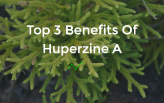 huperzine a benefits