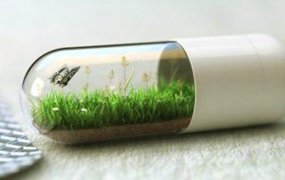 natural nootropics capsule