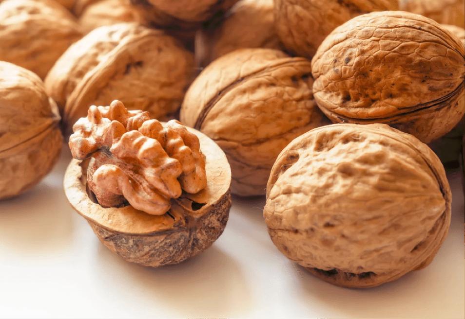walnut food